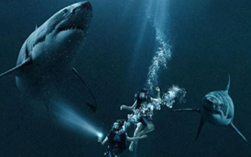 Sinopsis film 47 meters down sub indo