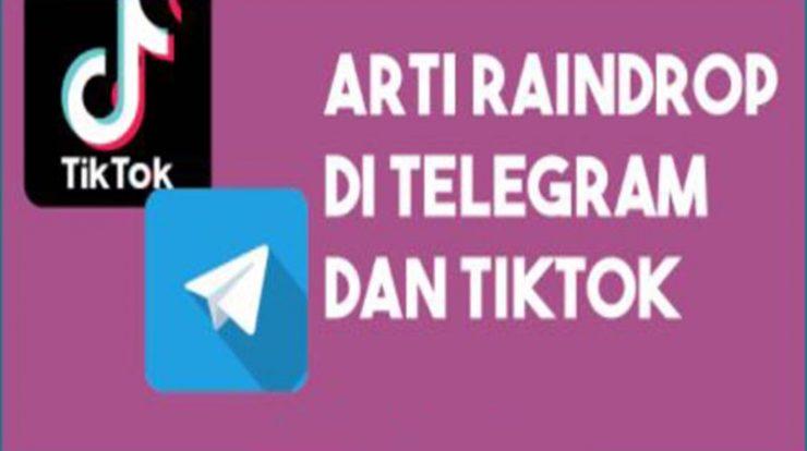 Wajib Tahu Arti Raindrop Di Telegram Dan Tiktok
