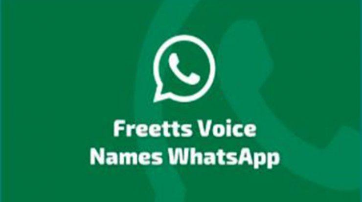 Aplikasi Freetts Voice Names Whatsapp, Cara Sound of Text